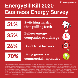 EnergyBillKill 2020 Energy Survey